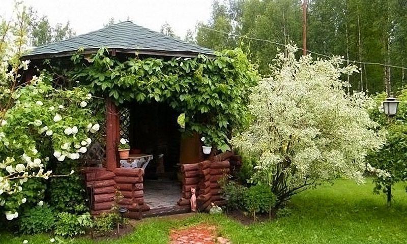 Удачное решение – окружить навес декоративными кустарниками или вьюнами. Постоянно цветущие растения наполнят беседку приятными ароматами