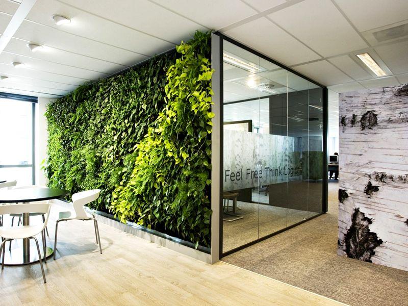 Комбинирование растительной и зеркальной стены