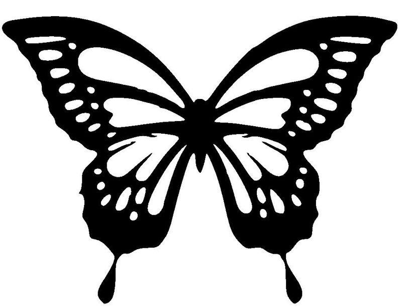 Декор стен бабочками своими руками трафарет 61