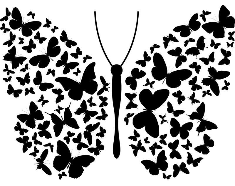 Шаблоны бабочек для декора стен своими руками 292