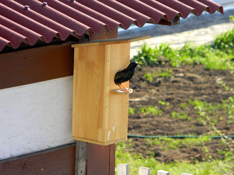 Установка постройки под крышей дома