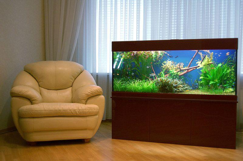Аквариум - это не только превосходный способ насытить воздух влагой, но и замечательный декор для создания расслабляющей обстановки