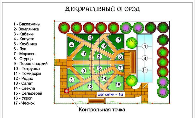 Вариант схемы размещения декоративных посадок