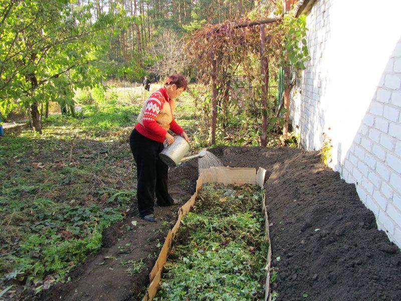 Экологический подход предполагает применение более натуральных решение, например теплой грядки