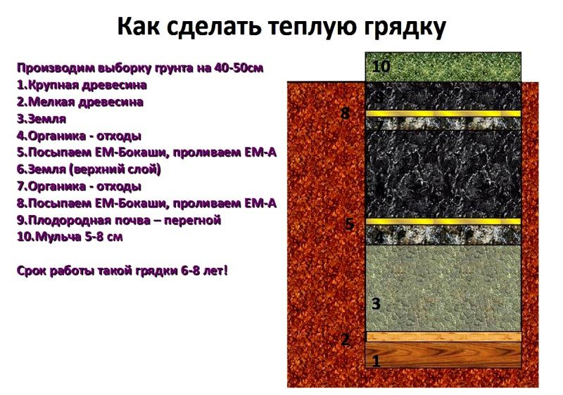 На схеме можно видеть из каких слоев состоит теплая конструкция