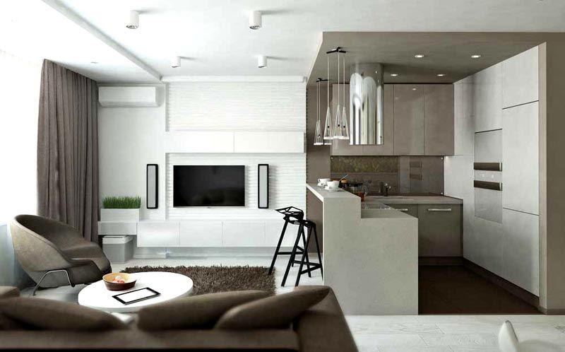 Современная кухня студия. Фото, дизайн интерьера подтверждают соответствие актуальным модным тенденциям, в которых широко применяют серые оттенки