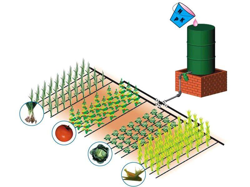 Увеличиваем урожай вдвое: капельный полив в теплице своими руками