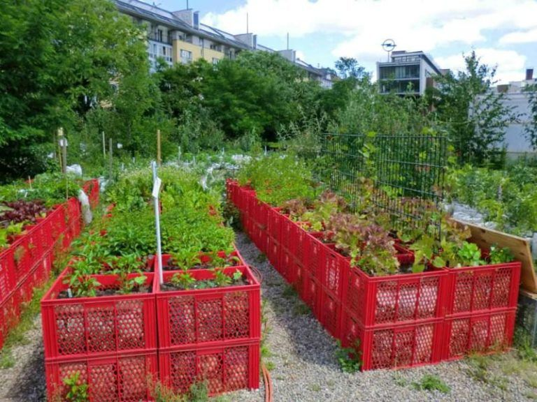 Ограда на огороде своими руками