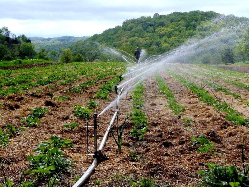 Для автоматической установки потребуется небольшой насос, поддерживающий стабильный напор воды