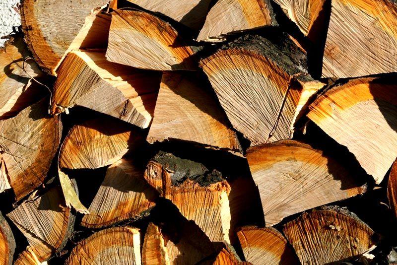 Хорошие дрова – важная составляющая правильной растопки