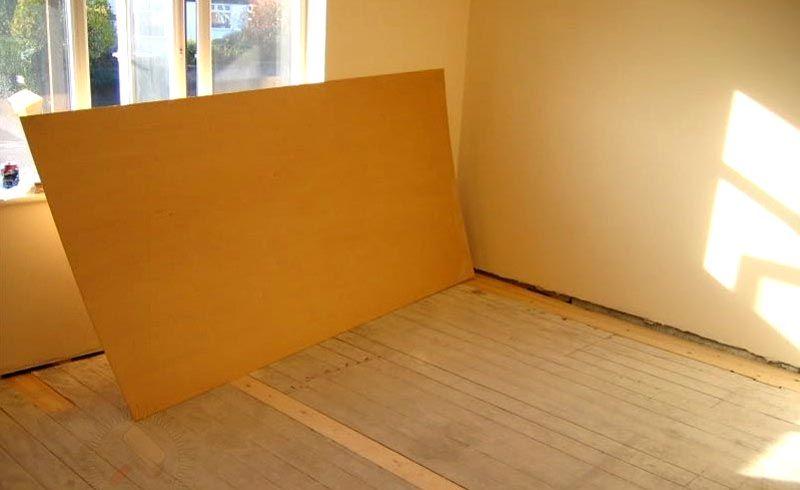 Как вырастить персик из косточки в домашних условиях: пошаговая