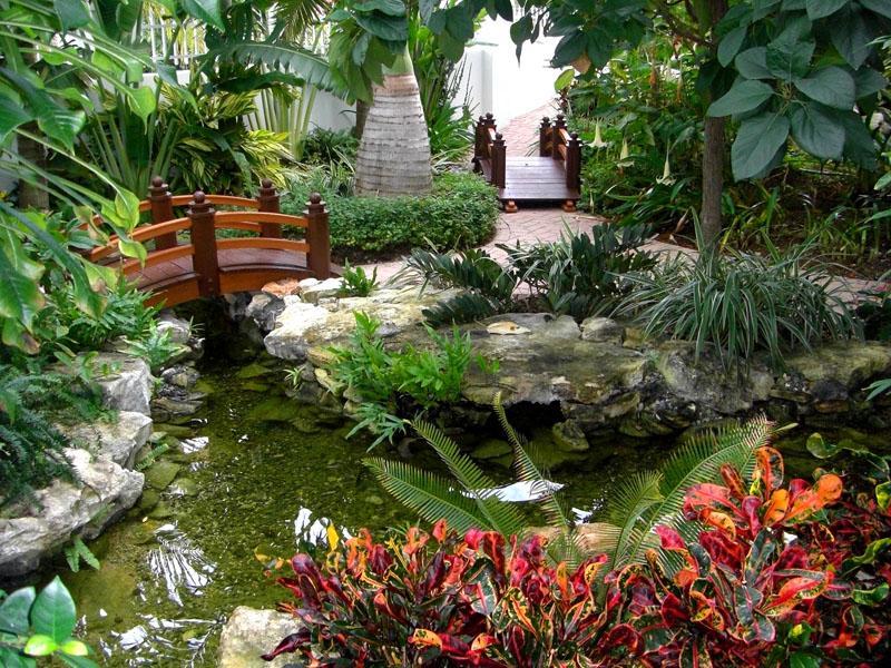 Экзотический дизайн предполагает использование интересных растений