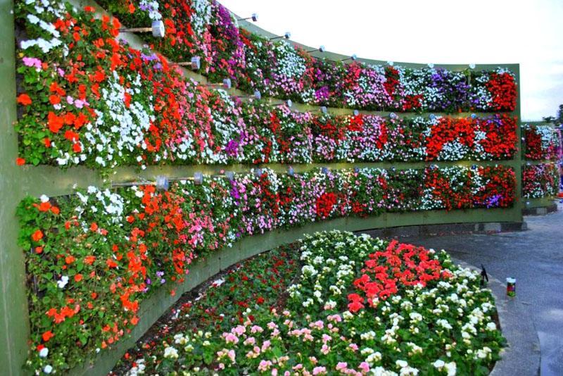 Оформление стен цветочными композициями