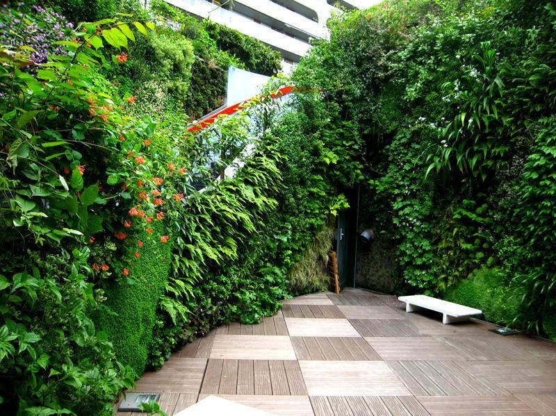 Озеленение для экстерьера