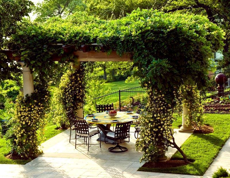 Пергола, украшенная вьющимися растениями, прекрасно сочетается с природным ландшафтом
