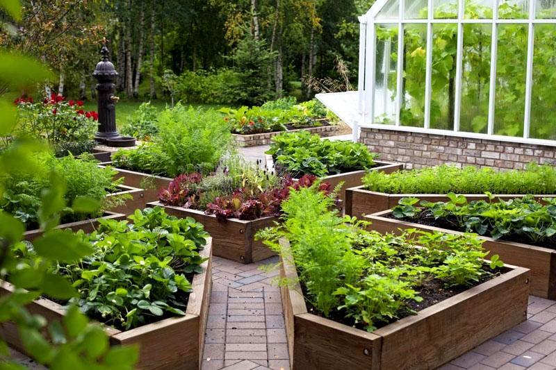 Декоративное оформление огорода