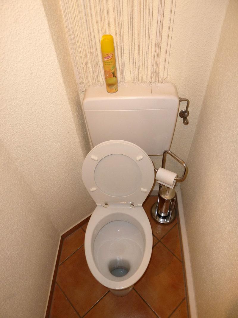 Размеры выбранной модели должны соотноситься с площадью туалета