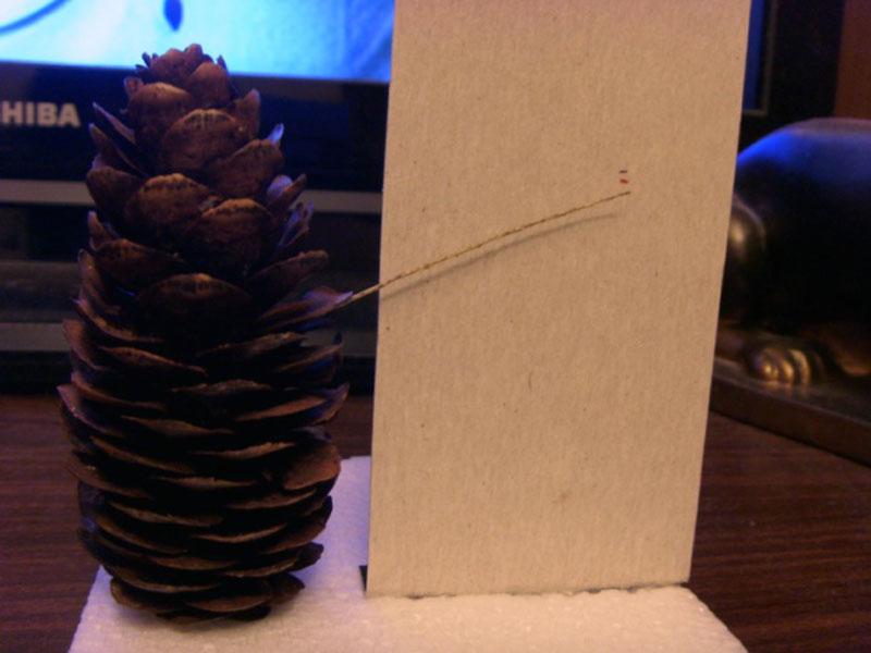 Если установить шишку вертикально возле картонной стенки и воткнуть в одну из чешуек веточку, то после калибровки получиться указатель влажности