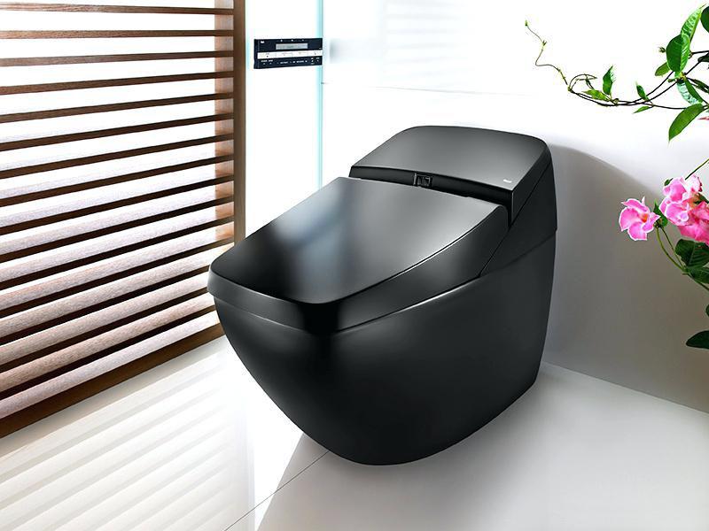 Кроме технических параметров, унитаз-биде должен вписываться в общее оформление ванной