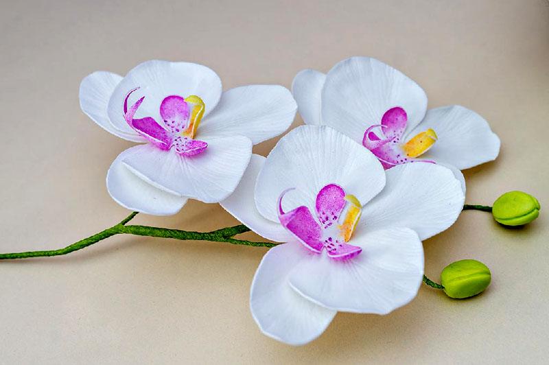 По веточке орхидеи без труда можно определить пошаговый процесс изготовления