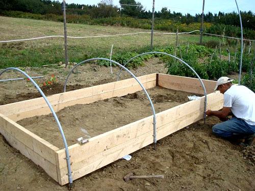 Парники из дуг с укрывным материалом: особенности установки, разновидности конструкций