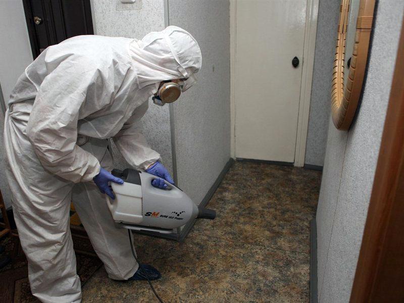 Представители санитарную станции проведут комплексную обработку квартиры
