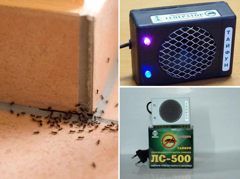 Воздействие ультразвука на насекомых