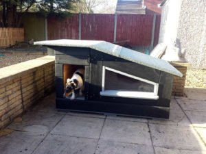 Беседка, будка для собаки или сараи