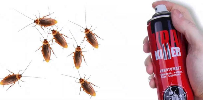 Аэрозоли распыляют вблизи от скопления насекомых
