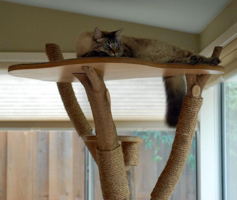 Можно использовать любую заготовку из дерева