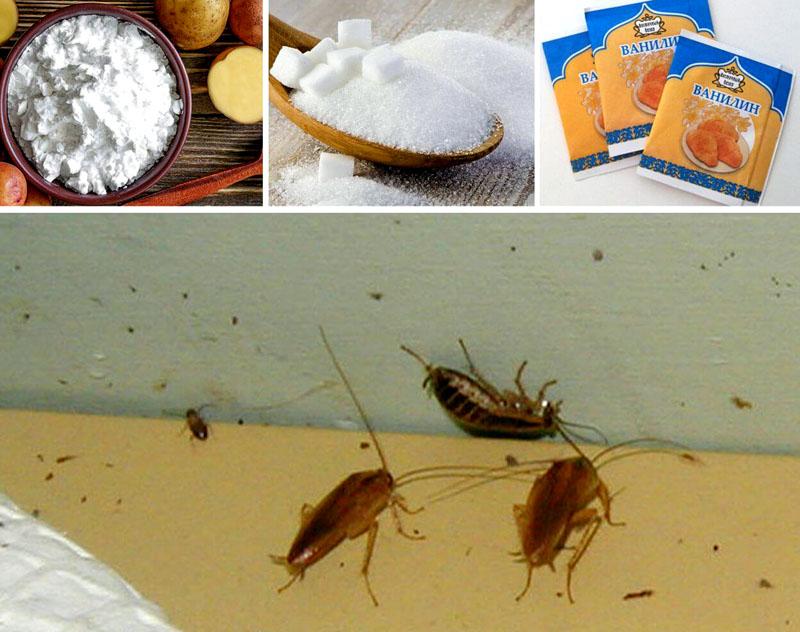 Рецепт против насекомых: бура, крахмал, сахар и ванилин