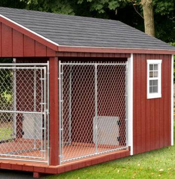 Вольер для собак: фото