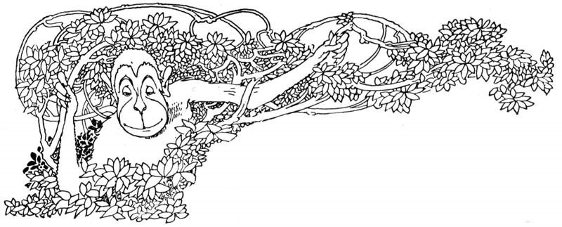 Элегантная красота, застывшая в вечности, или Как выполняется резьба по дереву: фотографии, рисунки и эскизы