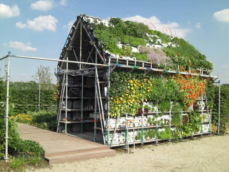 Обычный сарай может стать плацдармом для огородных экспериментов. Особенно, если он на солнечной стороне. Здесь можно выращивать свежую зелень и цветы