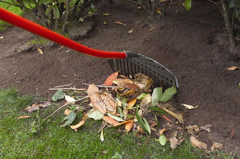 Прибор для уборки листьев и картофеля