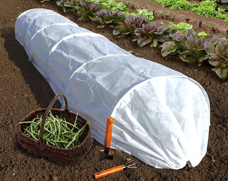 Плотность материала способствует хорошему воздухообмену, на почве не скапливается конденсат, что предупреждает развитие бактерий и микроорганизмов под ним