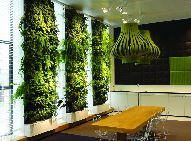 Для вертикального озеленения используют питательный грунт