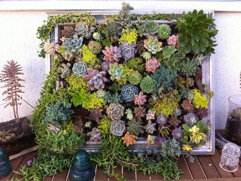 Если зеленую композицию вы размещаете напротив окна на солнечной стороне, можно обойтись без дополнительных осветительных приборов