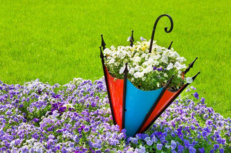 Старый зонтик посредине цветочной полянки, наверняка он найдется в каждой семье