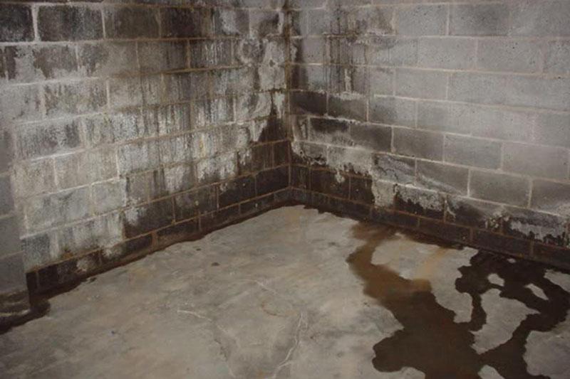 Последствия неправильной гидроизоляции или её полного игнорирования