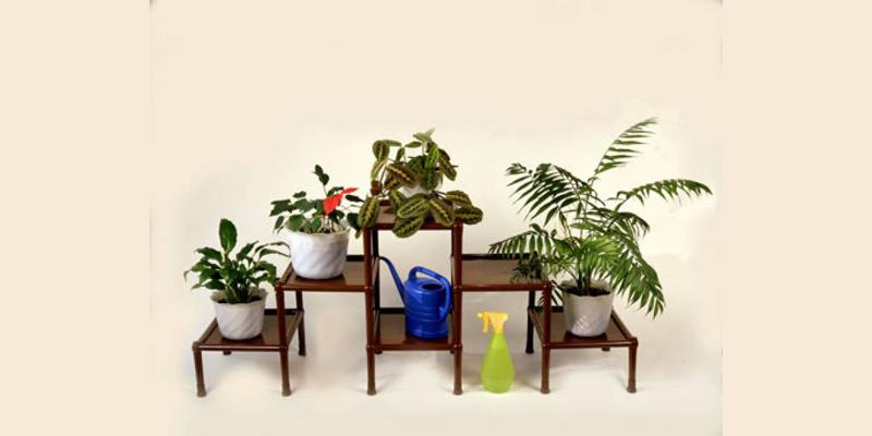 🌷Как выбрать подставку для цветов на подоконник: 30 креативных решений