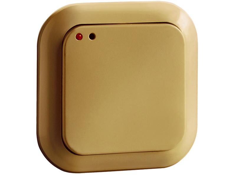 Комбинированный вариант — и простой выключатель, и беспроводной