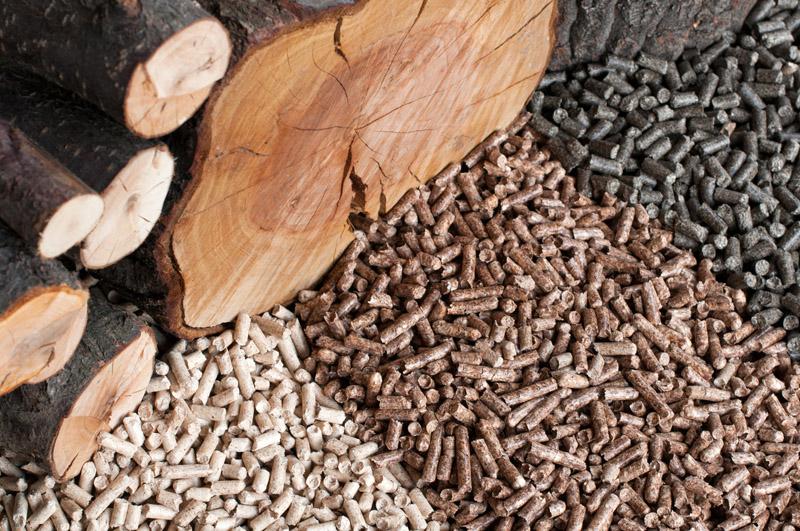 Твердые виды биотоплива — это дрова, топливные брикеты или пеллеты, газообразные – это биогаз и биоводород, а жидкие – биоэтанол, биометанол, биобутанол, диметиловый эфир и биодизель