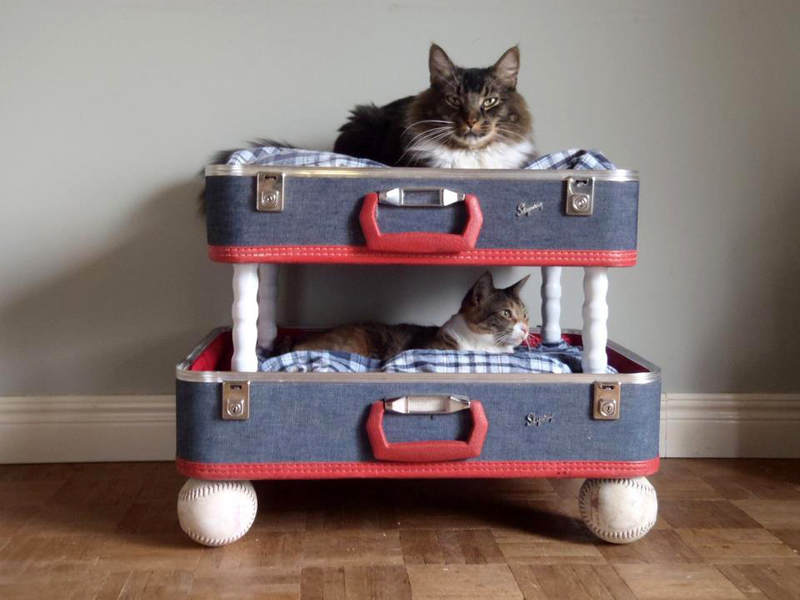 😻 Как сделать своими руками домик для кошки за 15 минут: лучшие мастер-классы с инструкциями