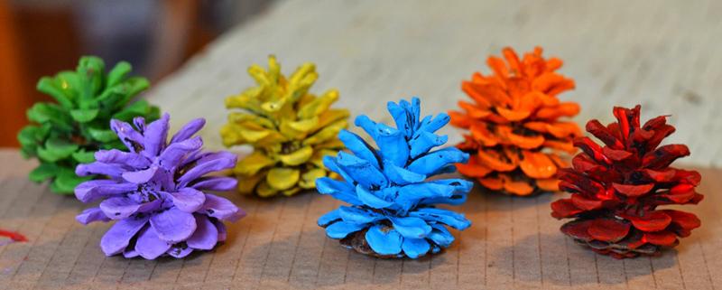 Покрасить шишки в яркие цвета и удалить несколько чешуек снизу