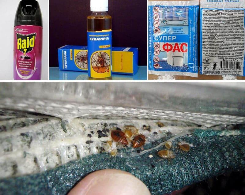 Инсектициды выпускают в аэрозолях, порошках и жидком виде
