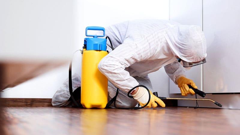 Профессионалы имеют в своём арсенале специальное оборудование для обработки квартир или частных домов с помощью высоких температур