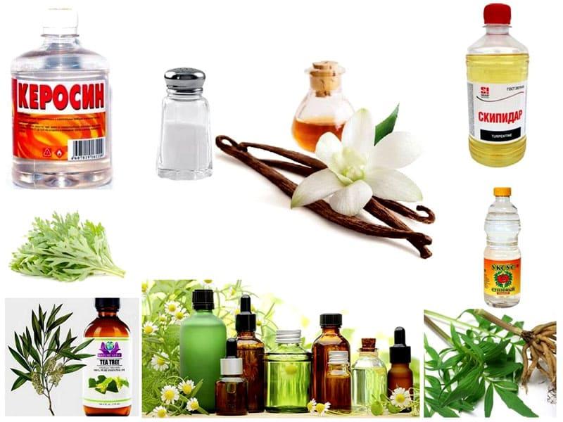 В борьбе с паразитами эффективны средства с резкими запахами