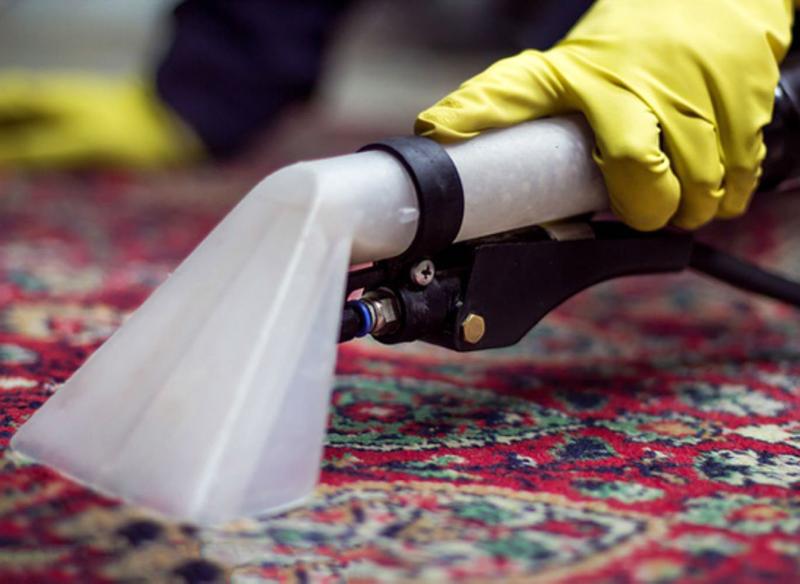 Профессионалы обработают пятно специально подобранными составами