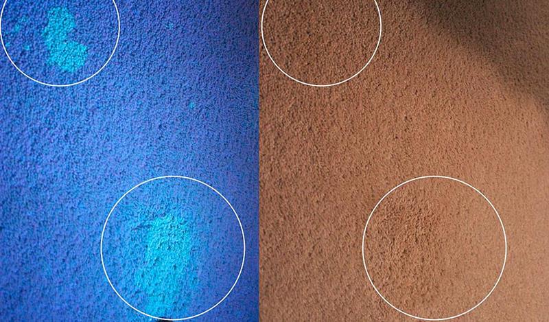 Обнаружить пятно можно под ультрафиолетом